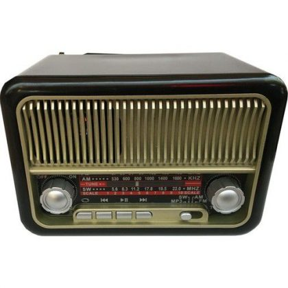 Everton RT 308 Radyo